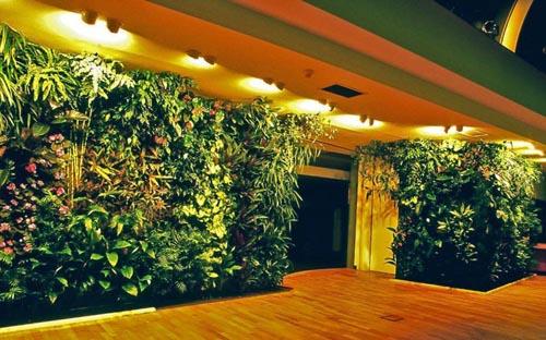 长沙景观设计公司:室内绿植墙